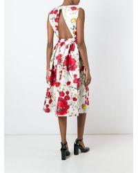 Dolce & Gabbana | Multicolor Butterfly-print Cotton Dress | Lyst