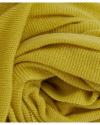 CASH CA - Yellow Lime Cashmere Pashmina Scarf - Lyst