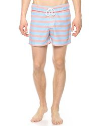 Parke & Ronen - Pink Chora Swim Trunks for Men - Lyst