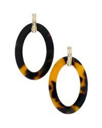 Lauren by Ralph Lauren | Brown Goldtone Pave Crystal Tortoise Oval Drop Earrings | Lyst