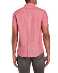 Ben Sherman - Pink Pindot Short Sleeve Sport Shirt for Men - Lyst