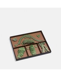 COACH - Green Steggy Puzzle - Lyst