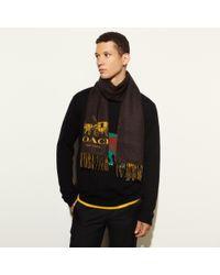 COACH | Black Bicolor Logo Scarf for Men | Lyst