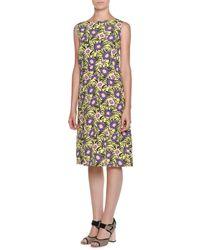 Marni - Purple Sleeveless Floral-print A-line Dress - Lyst