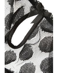 Mimi Holliday by Damaris | Black Knickerbocker Glory Tulle And Stretch-silk Satin Thong | Lyst