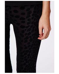 Missguided | Multicolor Carman Leopard Flocked Leggings Black | Lyst