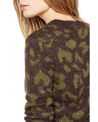 Liu Jo | Brown 'animal' Jumper | Lyst