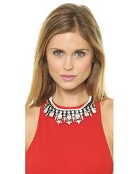 Adia Kibur - Black Crystal Choker Necklace Whiteclear - Lyst