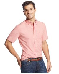 Tommy Hilfiger | Pink Big And Tall Mini-dobby Cotton Shirt for Men | Lyst