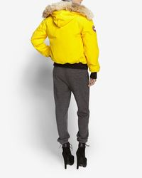 Canada Goose | Chilliwack Bomber Jacket: Yellow | Lyst