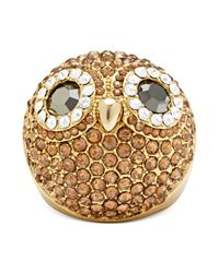 Fossil | Metallic Gold-Tone Crystal Pave Dome Owl Ring  | Lyst