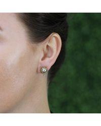 Todd Reed - Metallic Tahitian Pearl And Black Diamond Stud Earrings - Lyst