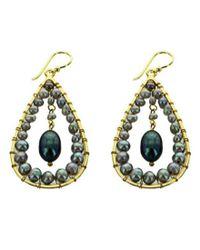 Panacea | Gray Freshwater Pearl Teardrop Earrings | Lyst