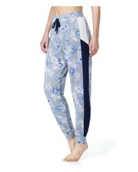 Kensie | Blue Floral French Terry & Mesh Lounge Jogger Pants | Lyst