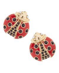 kate spade new york | Red Ladybug Stud Earrings | Lyst