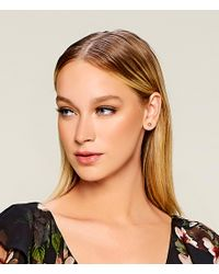 Lauren by Ralph Lauren - Metallic Goldtone Stud Earrings - Lyst