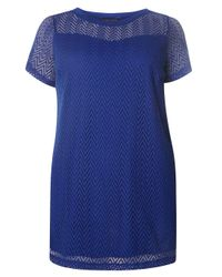 Dorothy Perkins | Blue Dp Curve Cobalt Chevron Lace Detailed Top | Lyst