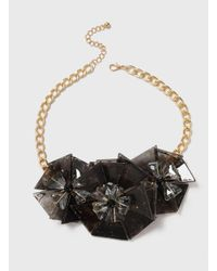 Dorothy Perkins - Black Flower Collar Necklace - Lyst