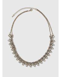 Dorothy Perkins | Brown Rhinestone Collar Necklace | Lyst
