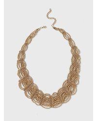 Dorothy Perkins - Metallic Seed Bead Loop Necklace - Lyst