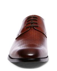 Steve Madden | Brown Jonah Leather Lace Up for Men | Lyst
