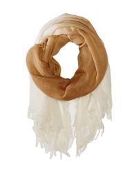 Chan Luu - Brown Shadow Dye Cashmere And Silk Scarf - Lyst