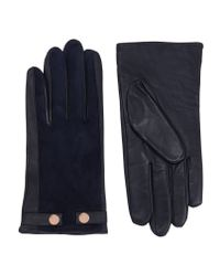 Ted Baker | Blue Suede Stud Detail Gloves | Lyst