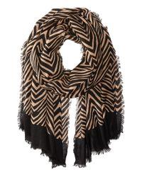 Vera Bradley | Multicolor Soft Wool Scarf | Lyst
