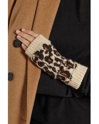 Rosie Sugden - Multicolor Cashmere Leopard-print Fingerless Gloves - Lyst