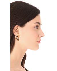 Elizabeth Cole - Metallic Dries Earrings - Lyst