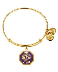 ALEX AND ANI   Gold Seduced By Innocence Violet Expandable Wire Bangle   Lyst