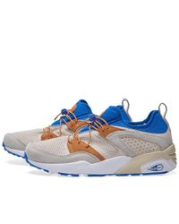 PUMA - Blue X Sneakers '76 Blaze Of Glory for Men - Lyst