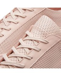 Common Projects - Pink Achilles Low Perforated - Lyst