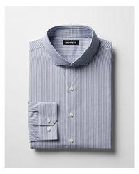 Express - Blue Ig & Tall Classic Striped Cotton Point Collar Dress Shirt for Men - Lyst
