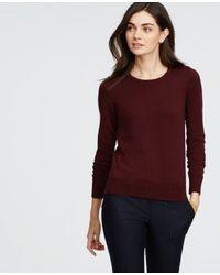 Ann Taylor   Purple Petite Button Shoulder Sweater   Lyst