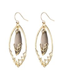 Alexis Bittar - Brown Imperial Georgian Lace Orbiting Earring - Lyst