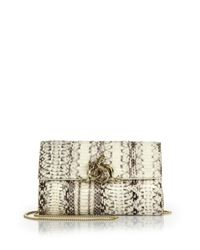 Roberto Cavalli | Natural Watersnake Clutch | Lyst