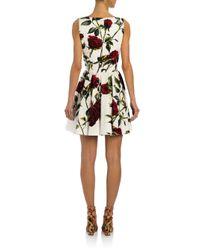 Dolce & Gabbana - Black Brushstroke Print Dress - Lyst