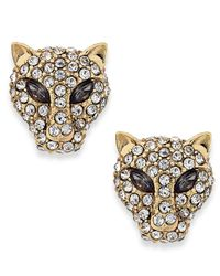 ABS By Allen Schwartz | Metallic Gold-Tone Crystal Jaguar Stud Earrings | Lyst