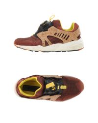 PUMA - Brown Low-tops & Trainers - Lyst