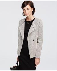 Ann Taylor | Gray Textured Moto Jacket | Lyst