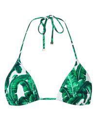 Dolce & Gabbana - Green Banana Leaf Triangle Bikini - Lyst