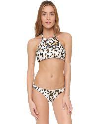 Suboo - Multicolor Sandy Leopard Bikini Top - Lyst