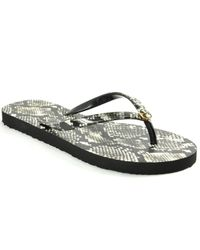 Tory Burch - Multicolor Printed Thin Flipflop - Lyst
