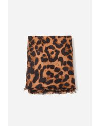 Forever 21 Brown Leopard Print Oblong Scarf