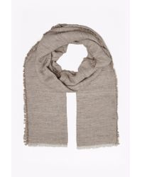 French Connection   Gray Natural Lightweight Scarf   Lyst