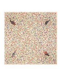 Gucci - Natural Birds Of Prey Modal Cotton Shawl - Lyst