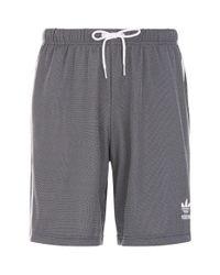Adidas Originals - White Plgn Shorts for Men - Lyst