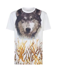 Etro - White Wolf Face Graphic T-shirt for Men - Lyst