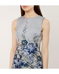 Hobbs - Blue Royal Chrysanthemum Shift - Lyst